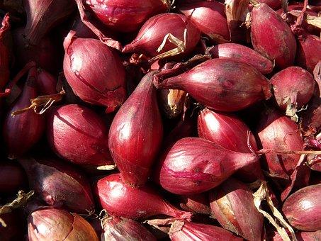 Red Shallots, Shallots, Shallot, Noble Onion, Onion
