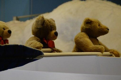 Teddy, Teddies, Bear, Boat, Rowing, Decoration