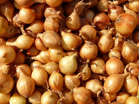 Shallot, Shallots, Noble Onion, Onion, Sharp
