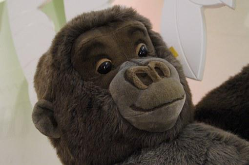 Face, Gorilla, Monkey, Teddy Bear, Steiff, Soft Toy