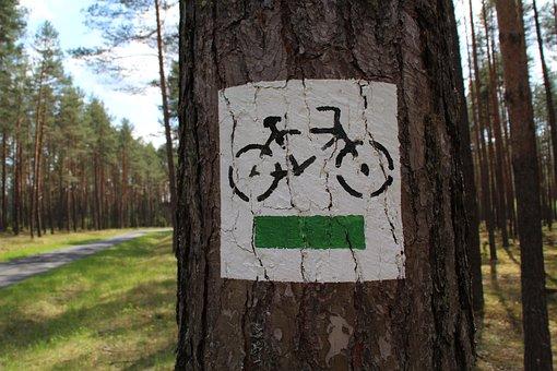 Bike, Route, Trail, Aquamarine, The Path, Spring