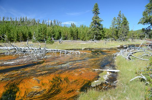 Rabbit Creek, Yellowstone National Park, Wyoming