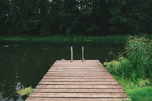 Wooden Pier, Pond, Nature, Dock, Green, Wild, Peaceful