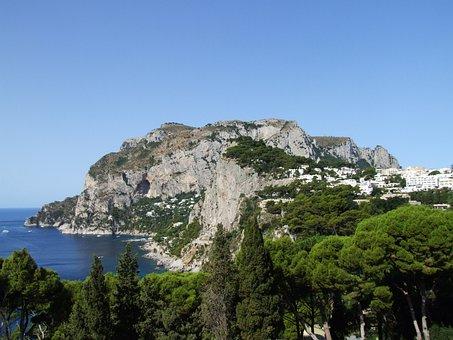 Sea, Coast, Rocky, Cliff, Vegetation, Scenic