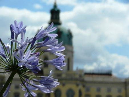 Castle, The Palace, Sky, Monument, Charlottenburg