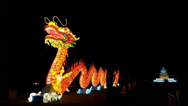 Dragon, Lantern, Chinese, Decoration, Lamp, Festival