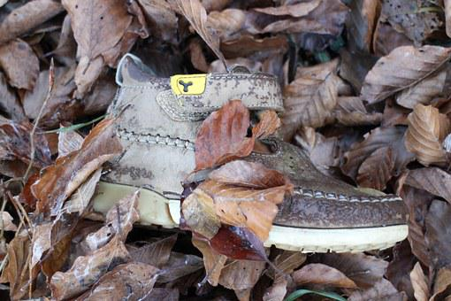 Children's Shoe, Shoe, Individually, Nature, Forest