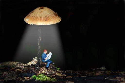 Tiny People, Small, Small World, Mini, Lantern Mushroom