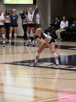 Female, Volleyball, Player, Sport, Athlete, Adult