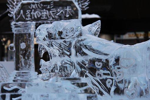 Ice Festival, Tiger, Beautiful, Ice, Ice Sculpture