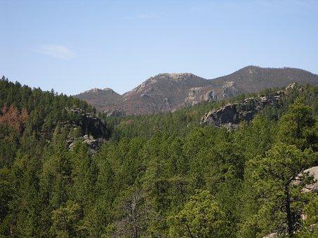 Backpacking, Black Elk Wilderness, Black Hills