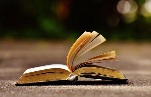 Book, Pitched, Book Pages, Paper, Browse, Open