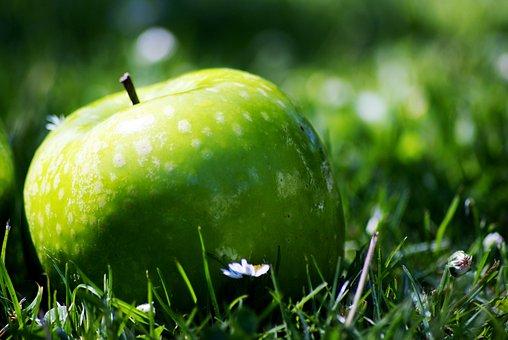 Apple, Nature, Green, Garden, Grany Fruit Diet, Daisy