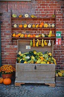 Pumpkin, Harvest Time, Sale, Decoration, Benefit From