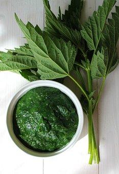 Vegetable, Stinging Nettle, Health, Vegan, Conscious