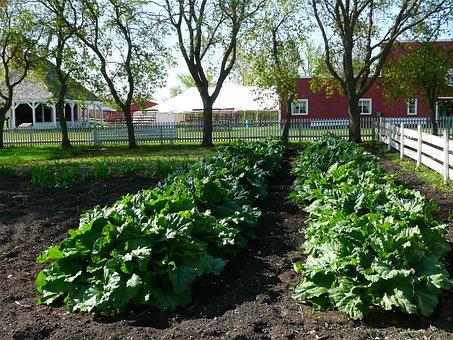 Steinbach, Mennonite Heritage Village, Gardening