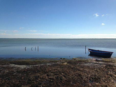 Camargue, Pond, Boat, Water Plan, Nature