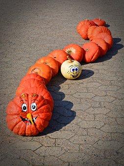 Pumpkin, Funny, Painted, Caterpillar, Harvest Time