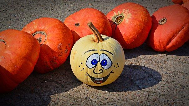 Pumpkin, Funny, Painted, Harvest Time, Sale, Decoration