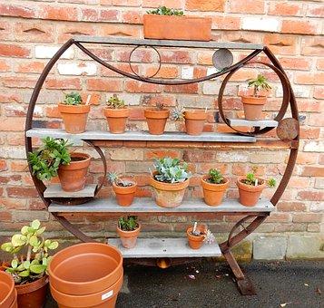 Garden, Pots, Green, Spring, Gardener, Work, Flower