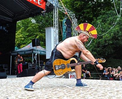 Festival, Concert, Guitarist, Wig, The Podium