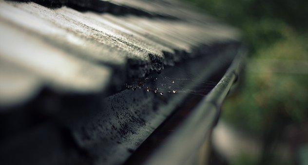 Rain Gutter, Gutter, Roof, Cobweb, Network, Drip