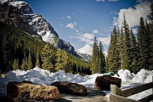 Mountain, Park, Trees, Nature, Landscape, National