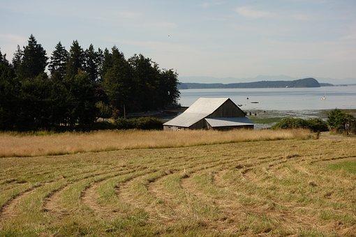 Barn, Old Farm Building, Farm, Rural, Weathered