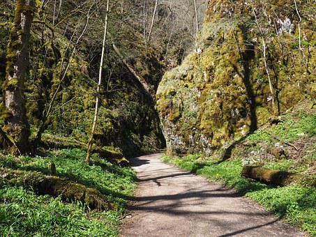 Wolf Valley, Hike, Away, Trail, Swabian Alb, Hiking