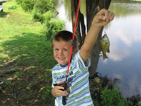 Fishing, Fish, Boy, Fishing Pole, Pond, Catch, Sport