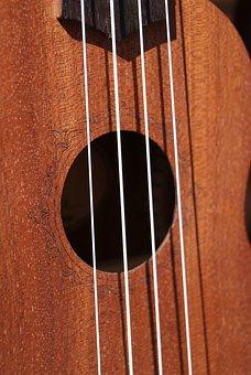 Strings, Ukulele, Music, Hollow, Wood, Instrument