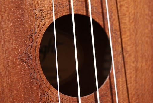 Strings, Ukulele, Music, Hollow, Wood, Instrument