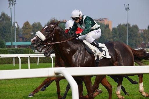 Hippodrome, Race, Arrival