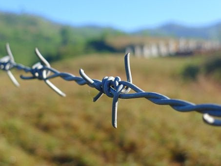 Barbed Wire, Fence, Border, Wire, Security, Barrier