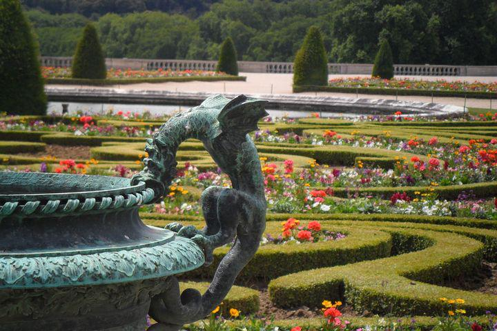 Versailles, Garden, Flowers, Hedge, Cis, Fountain
