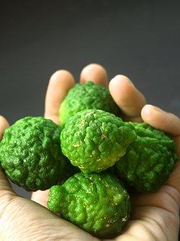 Bergamot, Fruit, Leaf, Thailand, Rough, Lemon, Natural
