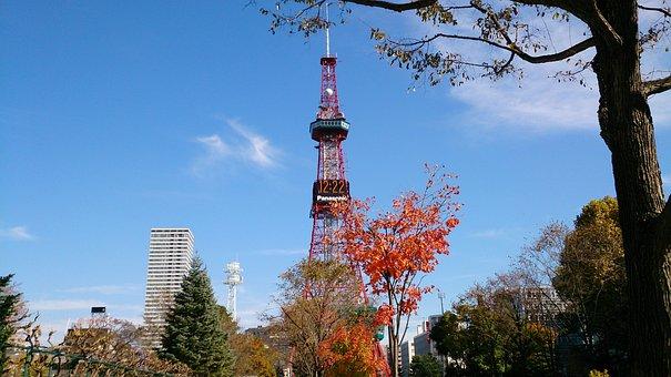 Hokkaido, Sapporo, Tv Tower, Boulevard, Odori Park
