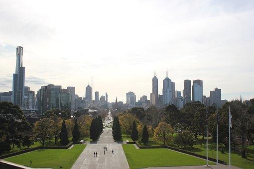 City, Skyline, Boulevard, Greenery, Woods, Trees, Lawns