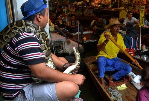 Snakes, Python, Boa Constrictor, Serpent, Reptile
