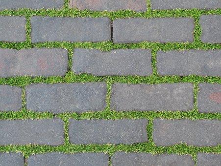 Pavement, Plant, Bricks, Nature, Grass, Green, Stone