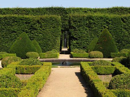 Garden, French, Castle, Boxwood, Beech, Hedges, Cordès