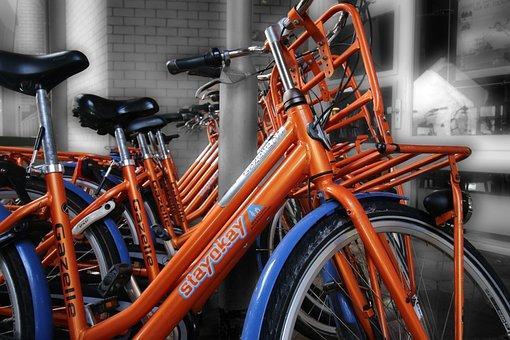 Rotterdam, Cycling, Bicycle Rental, Rent, Tourism