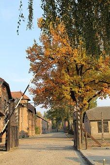 Auschwitz, Gateway, Alley, Extermination Camp