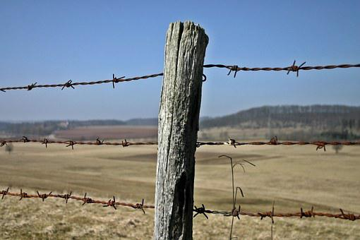Fence, Barbed Wire Fence, Post, Cattle Consecrate
