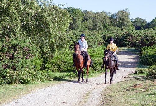 Horse Riders, Horses, Pony, Ponies, Riding
