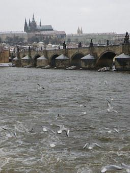 Prague, Charles Bridge, River, Vltava, Prague Castle