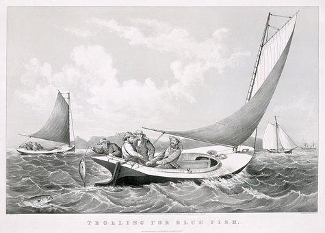 Fisherman, Fishing, Sailing Boats, Sail, Game Fish