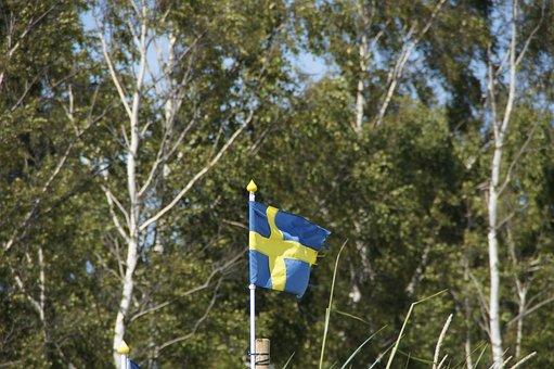 Birch, Sweden, Flag, Swedish, Swedish Flag