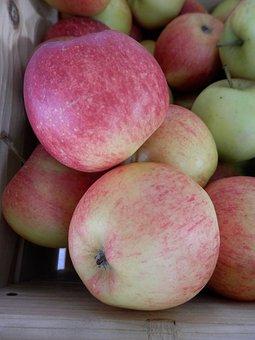 Apple, Fruit, Fruits, Apple Crate, Nature