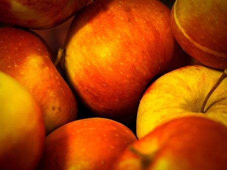Apple, Boskoop, Healthy, Fruit, Red, Apple Tree
